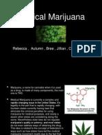 medical marijuana group project fall 2013