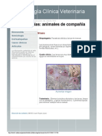 Dermatologia Clinica Veterinaria by Bros