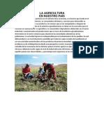 LA AGRICULTURA.docx