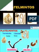 PLATELMINTOS-teniosis