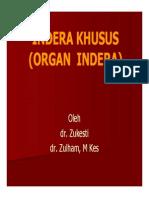 Sss155 Slide Indera Khusus