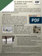 ACCIDENTE MINERO DE BAIA MARE (RUMANÍA),