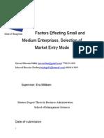 Factors Affecting SME's