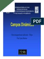 06 Campos Dinamicos