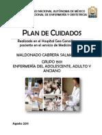 Plan de Cuidados de Servicio de Medicina Interna_Salma Maldonado-1
