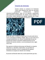 Cinética de flotación de minerales