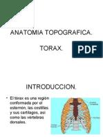 Pared Toracica