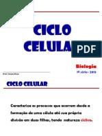 Ciclo Celular 2013.