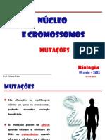 NUCLEO - MUTAÇÕES  2013