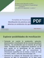 Portafolio de presentación