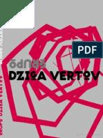 Grupo Dziga Vertov