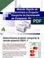 Rapid Vet H si IC teste de Diagnostic al Grupelor sanguine la Caini si Pisici