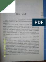 Xingyi 12 Forms