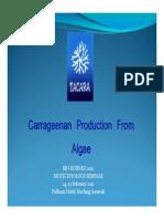 Tacara_Carrageenan