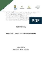 Abilitare Pe Curriculum Anca-georgiana Udrea