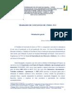 0 TCC Orientacoes Versao 17 de Novembro de 2012 (4)
