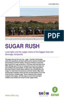 Sugar Rush: Land rights and the supply chains of the biggest food and beverage companies