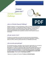 Deloitte Financial Challenge FY14