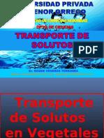 Transporte Solutos 2013 Upao-clase 4