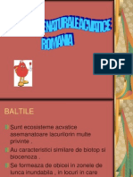 Ecosisteme Naturale Acvatice Romania