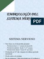 CLASE DE EMBRIOLOGÍA DEL S. N.