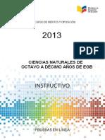 Instructivo CCNN 8a10 EGB 2013
