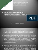 Espondilopatia Cervical