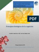 Principios Biologicos de La Educacon Holista