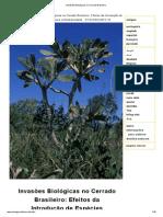 Ainvasões Biológicas no Cerrado Brasileiro