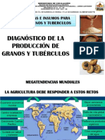 1 Diagnostico Cereale y Granos