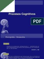 Procesos Cognitivos (2)