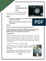 PRACTICA  _4 densidad (bandera) (1).doc