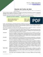 Cultivos - Fertilizacion de Maiz 1