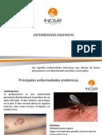 2013-08-16 ENFERMEDADES ENDEMICAS (1)