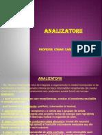 1.ANALIZATORII-PIELEA