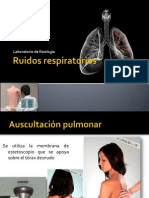 ruidosrespiratorios-121015122232-phpapp01