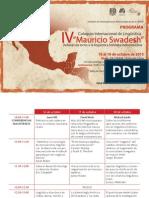 Programa Swadesh Final