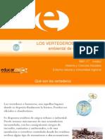 45897_180032_Los vertederos