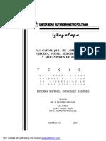UAMI13667.pdf