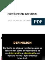 OBSTRUCCIÓN INTESTINAL  EXPOSICIÓN UPSJB 2013..