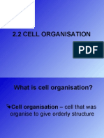 2.2 Cell Organisation