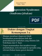 3.Nerve Compresi 04