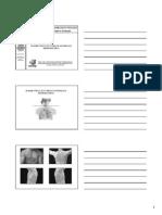 exame físico do torax[1]