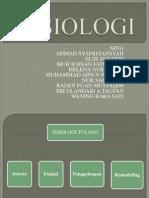 Fisiologi muskuluskeletal