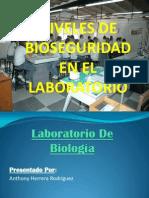 presentacindenivelesdebioseguridad-130223091841-phpapp02
