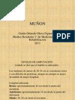 Muñon GOOF 2013