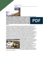 Contaminacion e Invernaderos