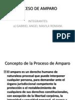 Proceso de Amparo, Segundo Grupo.