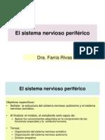 El Sistema Nervioso Periferico[1] (2)