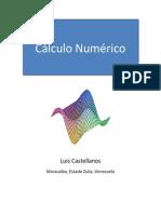 Calculo Numerico Luis Castellanos